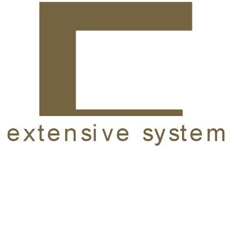 Extensive System
